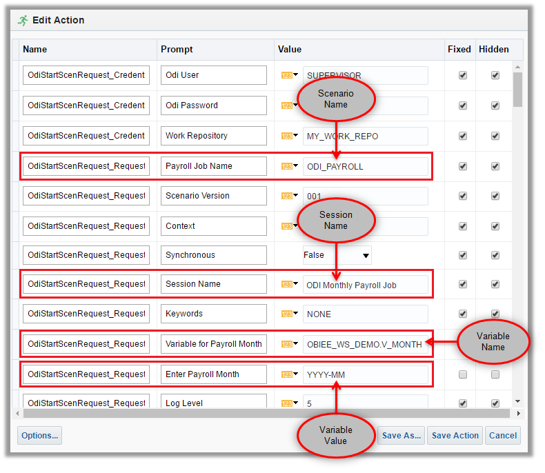 Figure 12 - Defining & Customizing the OBIEE Action
