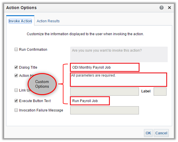 Figure 13 - Customizing the OBIEE Action Options