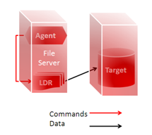 agent_file_server