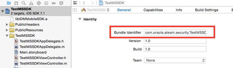 iOS Application Bundle Identifier