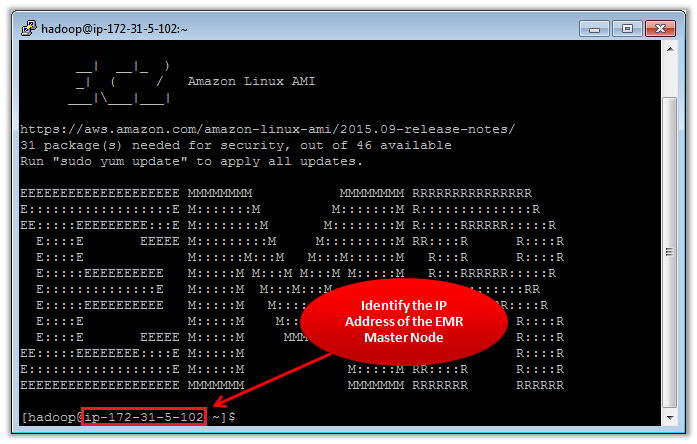 Figure 1 – Identifying the IP Address of the EMR Master Node