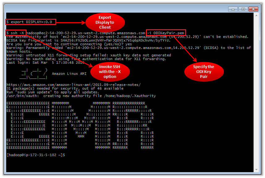 Figure 5 – Accessing the Amazon EMR Master Node with an X11 Terminal