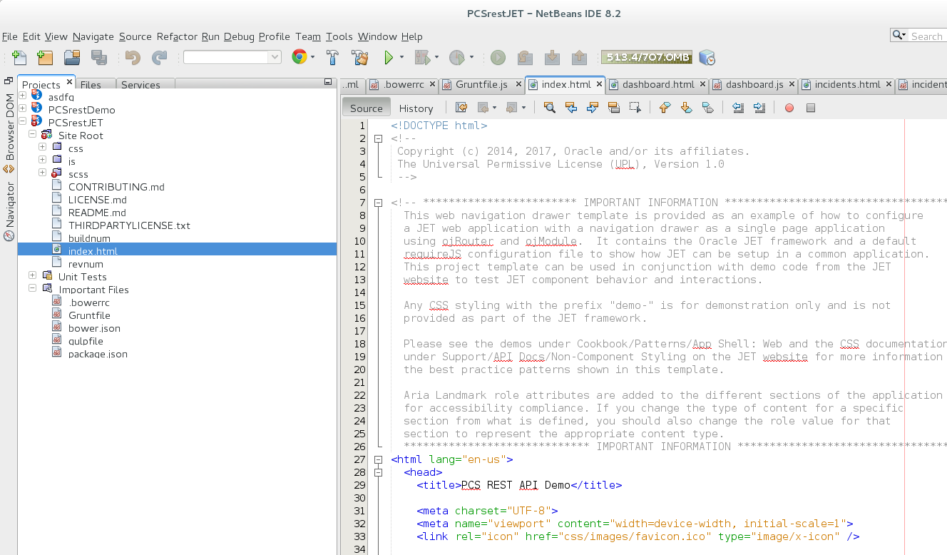 NetBeans-Project
