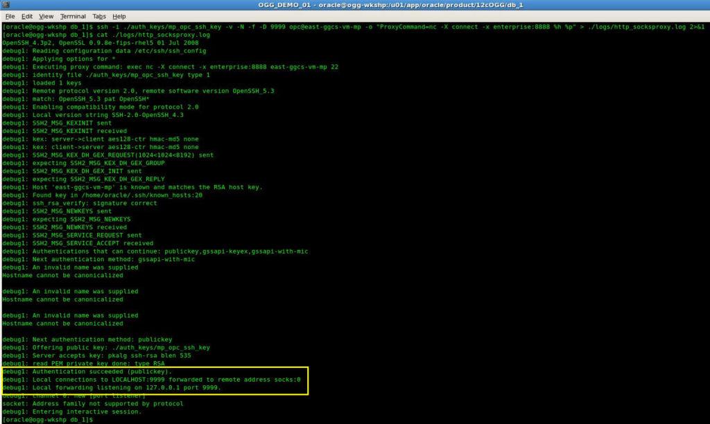OGG_Socks_HTTP_Proxy_02
