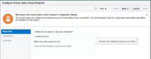 13_NetSuiteToSalesCloudIntegration_ConfigureSalesCloudInvoke01